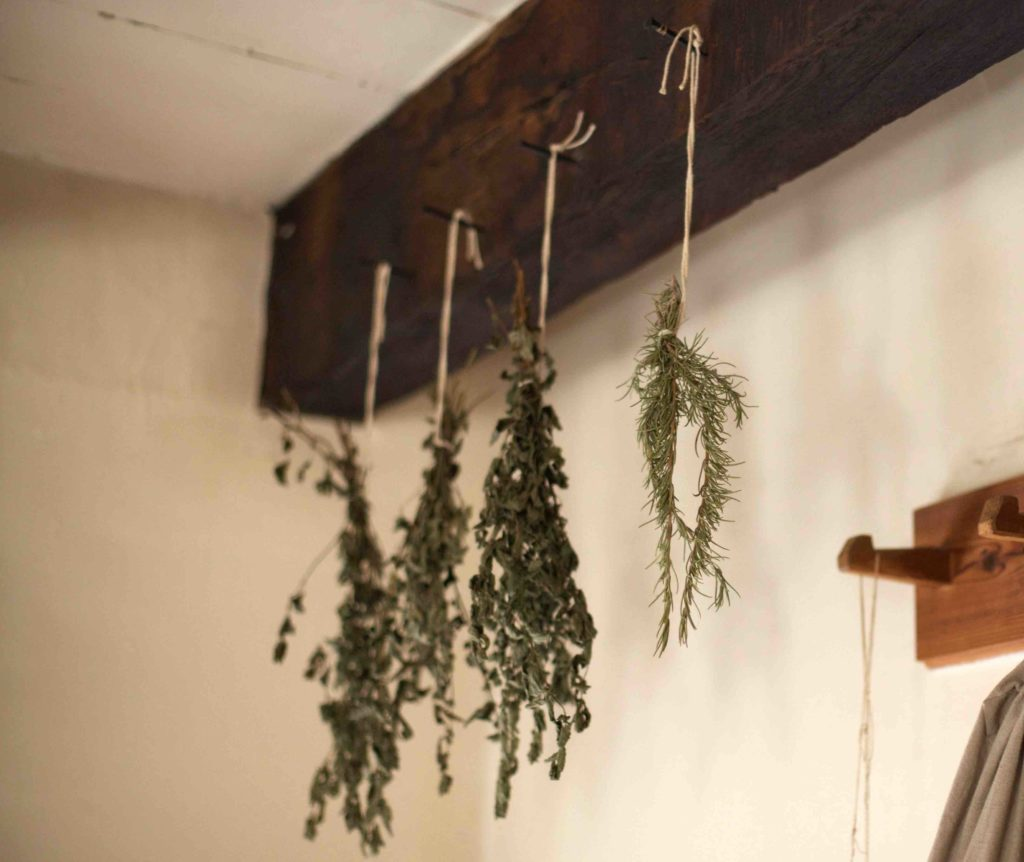 types of herbs best fro drying